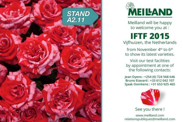 Meilland-IFTF-2015-web