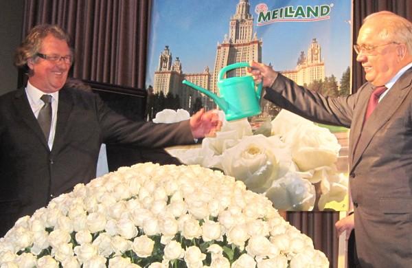 Meilland Roses - Rosier Grande Fleur Hybrid Tea lomonosov® Meicalanq
